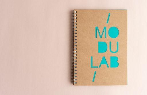 1_modulab